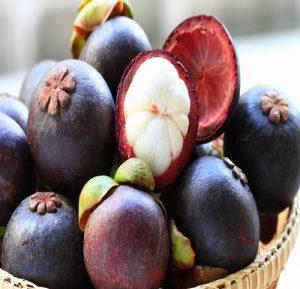 Tư vấn chứng nhận các loại quả tươi như cam, măng cụt, xoài, vải, nhãn, chôm chôm